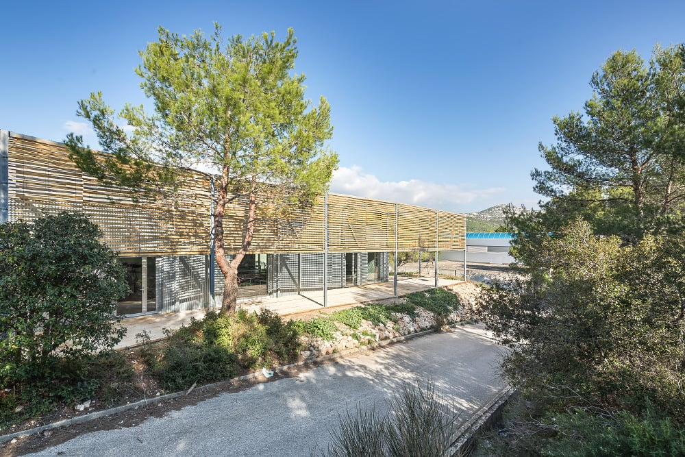 Ecole architecture marseille